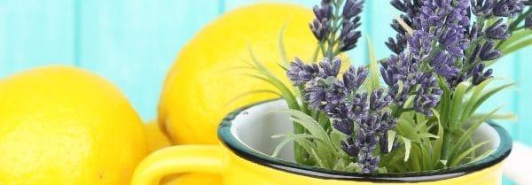 Kringle Candle - Lemon Lavender - Wosk zapachowy potpourri (64g)